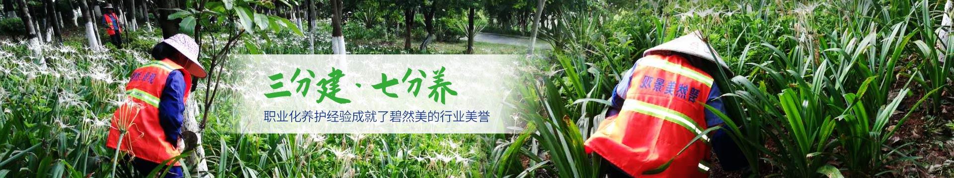 买球国际厅网站-園林綠化養護